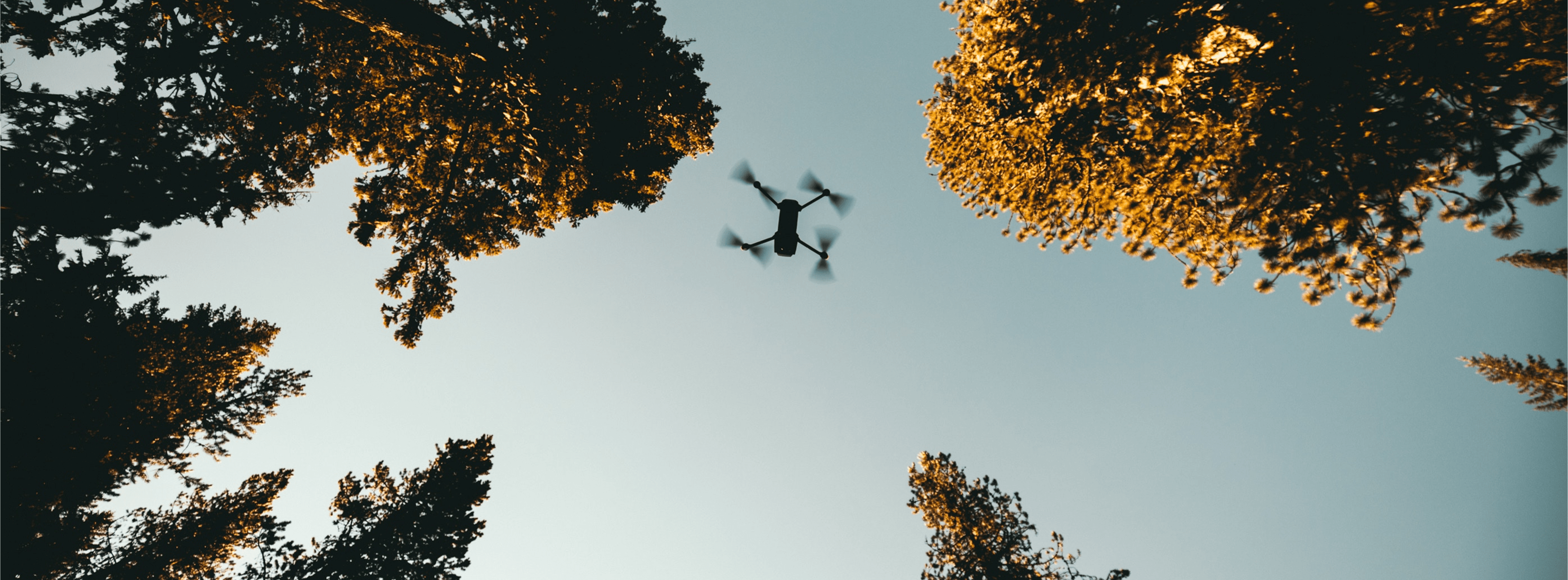 Drone Pilot Tips: Make The Most Of Spring