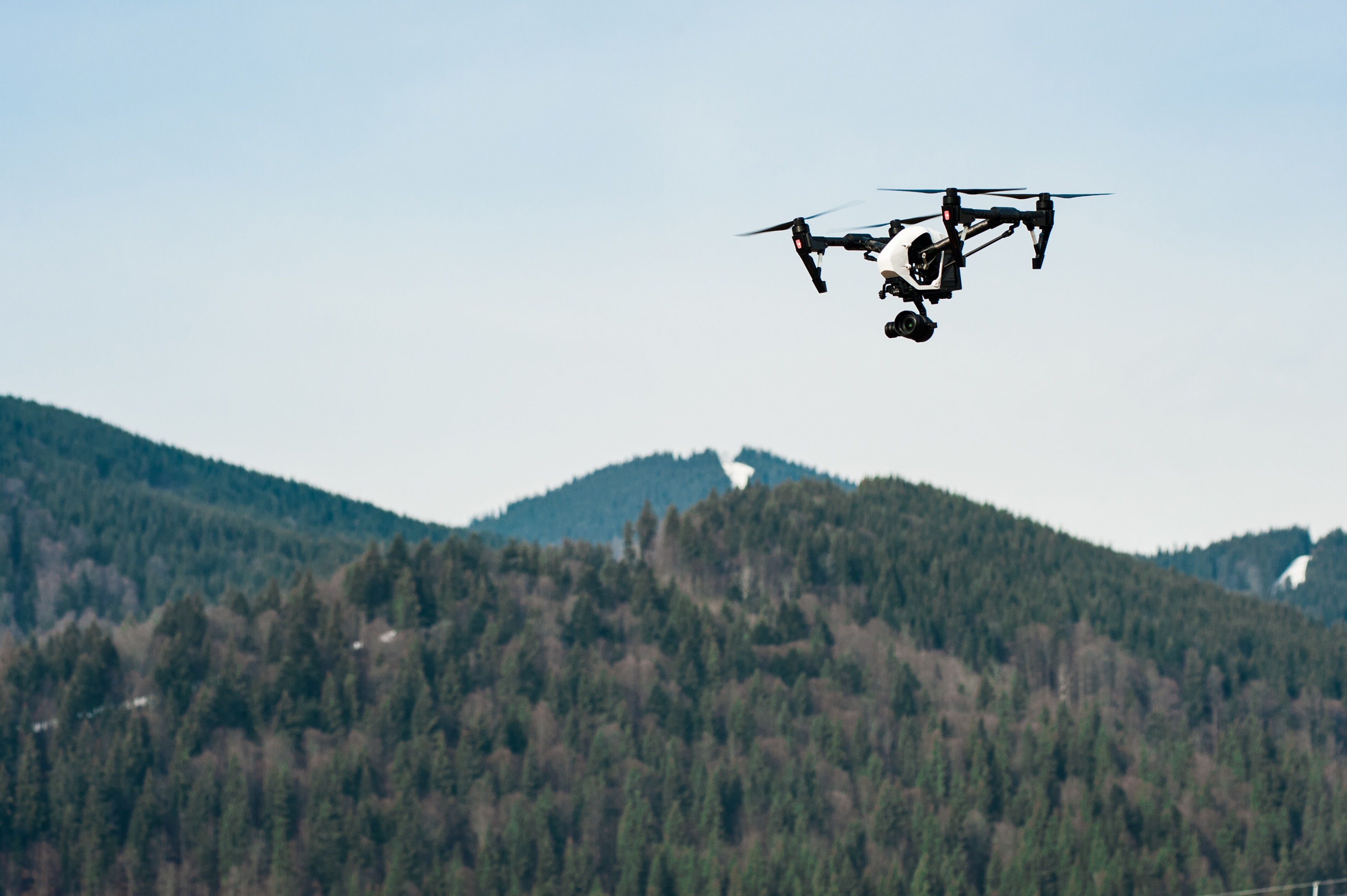 Drones and Environmental Survey